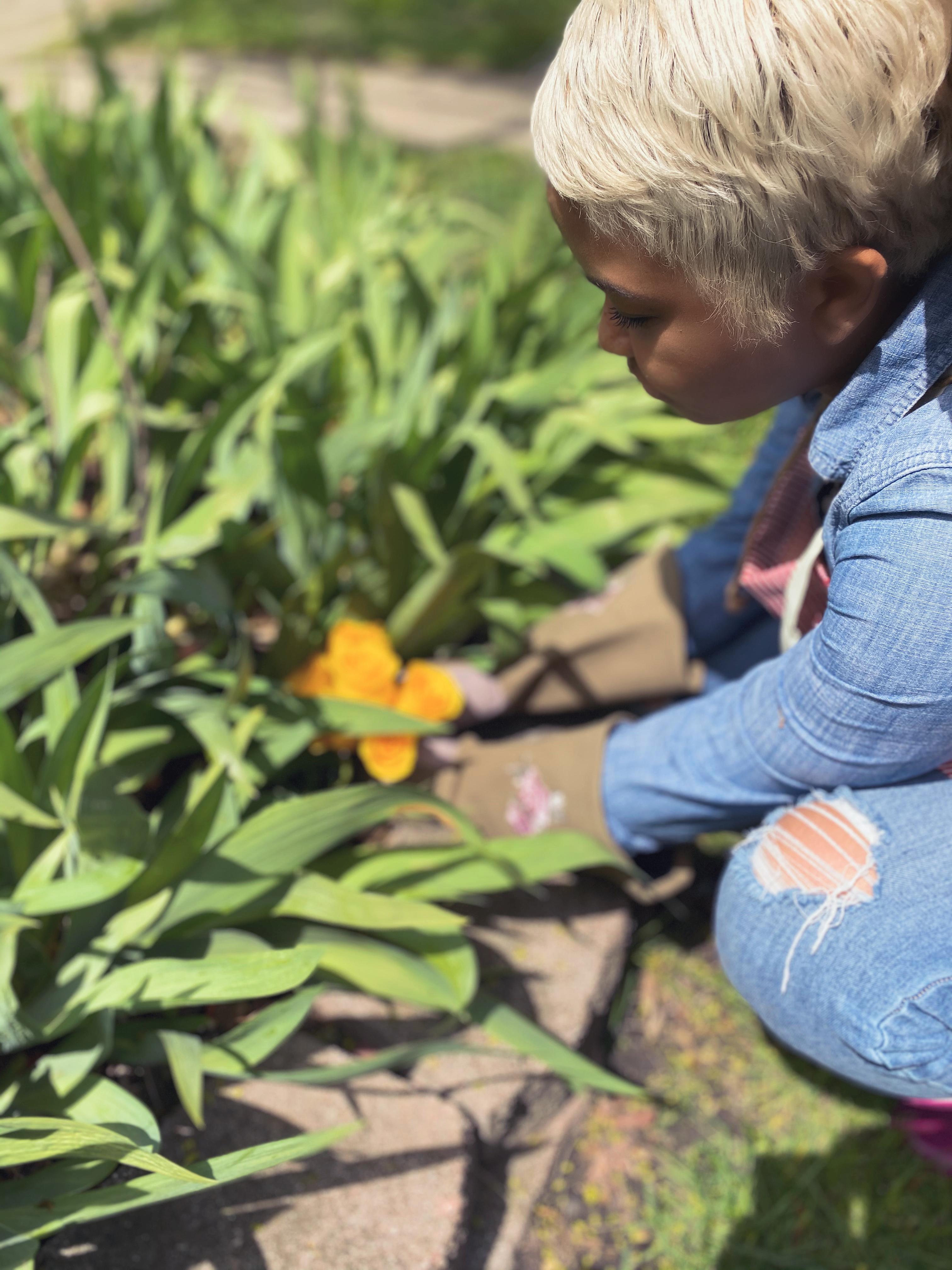 Gardening Your Life